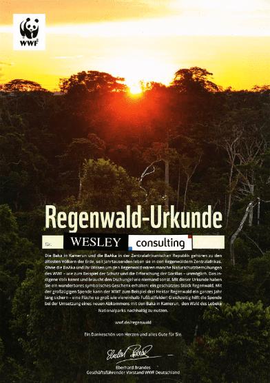 Regenwald Urkunde